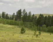 TBD Custer Limestone Road, Custer image