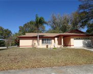 3112 Teal Terrace, Safety Harbor image