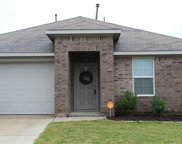 805 Silver Wing Dr, Austin image