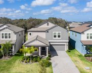 11458 Chilly Water Court, Riverview image