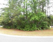 Lot 59 Redwing Ct., Pawleys Island image