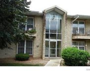 10341 Forest Brook Unit #F, St Louis image