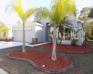 13645 Old Florida Circle, Hudson image