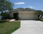3612 Trapnell Grove Loop, Plant City image
