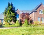 49550 TIMBER TRAIL, Novi image