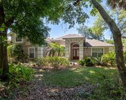 313 Bush Hill Court, Lake Mary image