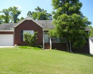 2723 Mollys Ct, Spring Hill image