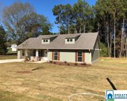 4065 Masters Rd, Pell City image