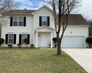8620  Sutherlin Forest Court, Charlotte image