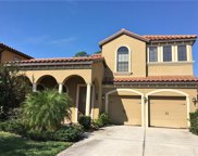 20334 Heritage Point Drive, Tampa image