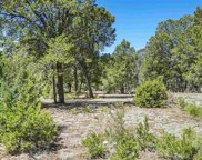 47 Silver Feather Trail, Pecos image