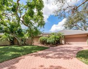 819 Buttonbush Ln, Naples image