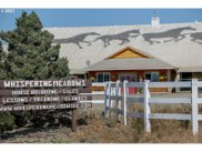 29015 MEADOWVIEW  RD, Junction City image