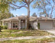 441 Deer Pointe Circle, Casselberry image
