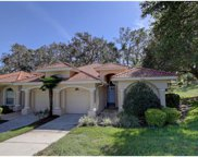 34234 Perfect Drive, Dade City image
