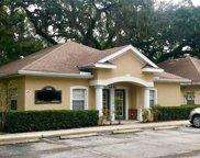 3246 Cove Bend Drive, Lutz image