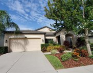 8248 Sequester Loop, Land O' Lakes image