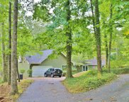 4335 Rest Camp Rd, Lenoir City image