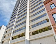 1415 North Dearborn Parkway Unit 3A, Chicago image