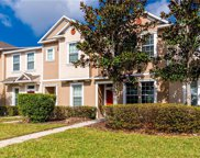 8914 Red Beechwood Court, Riverview image
