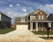 769 Ewell Farm Drive lot 425, Spring Hill image