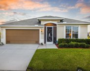 3376 Finola, Palm Bay image