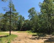 519 Petersburg Road, Dennisville image