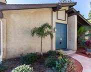 10016 Nuerto Ln, Spring Valley image