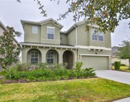 19310 Water Maple Drive, Tampa image
