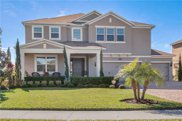 16068 Black Hickory Drive, Winter Garden image
