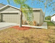7982 Carriage Pointe Drive, Gibsonton image