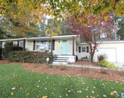 403 Chickasaw Ln, Trussville image