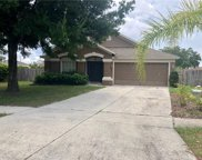 12416 Tree Pointe Court, Riverview image
