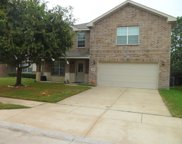 8648 Star Thistle Drive, Fort Worth image