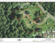 15290 Armstrong Woods Road, Guerneville image