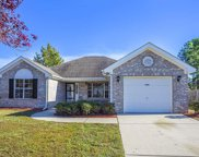 4360 Cross Cut Trail, Myrtle Beach image