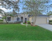 11119 Pine Lilly Place, Lakewood Ranch image