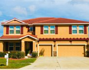 11734 Newberry Grove Loop, Riverview image