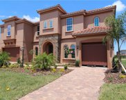 13517 Saw Palm Creek Trail, Bradenton image
