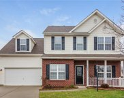 12607  William Walker Court, Charlotte image