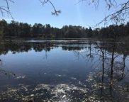 4889 Elmer Lake Trail Unit 10 acres, Lewiston image