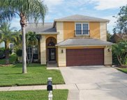 11517 Whispering Hollow Drive, Tampa image
