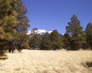 7023 W Private Pine Mountain Road, Flagstaff image