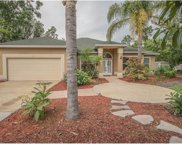 418 Soft Shadow Lane, Debary image