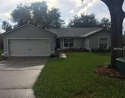 15121 Margaux Drive, Clermont image