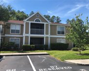 9481 Highland Oak Drive Unit 1616, Tampa image