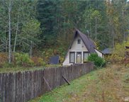 21928 Alder Loop Rd, Gold Bar image