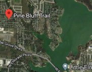 TBD Pine Bluff Trail, Little Elm image