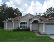 14133 English Sparrow Rd, Brooksville image