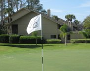 258 DEER RUN DR S, Ponte Vedra Beach image